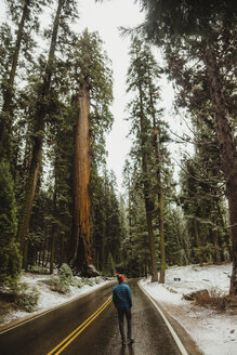 Rear view of young male hiker looking out at snowy forest, Sequoia National Park, California, USA - ISF06194