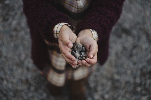 Cropped view of girls cupped hands holding pebbles - ISF06329
