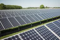 Germany, Kevelaer, solar plant - MOEF01111