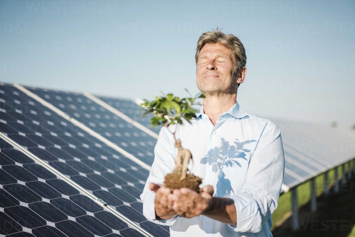 Mature man looking at privet, solar plant - MOEF01126 - Robijn Page/Westend61
