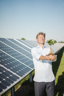 Mature man looking at privet, solar plant - MOEF01165