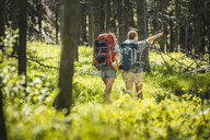 Rear view of teenage girl and young female hiker pointing in forest, Red Lodge, Montana, USA - CUF14899