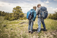 Rear view of father and teenage son reading map, Cody, Wyoming, USA - CUF15046