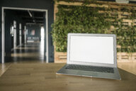 Laptop in green office - JOSF02270