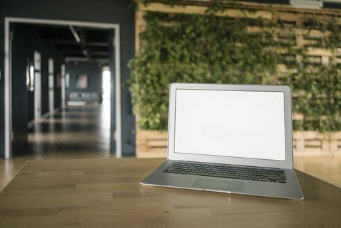 Laptop in green office - JOSF02270