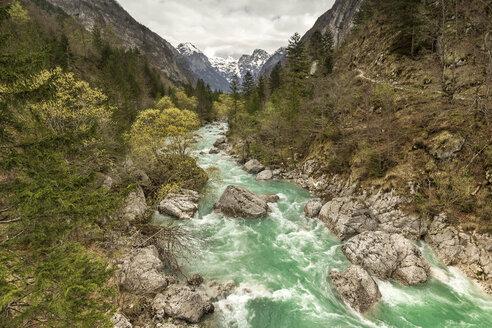 Slovenia, Goriska, Soca river - FPF00154