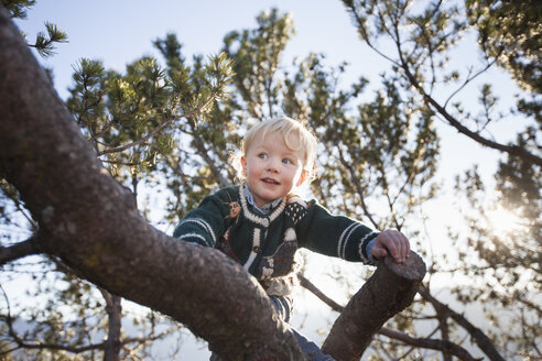 Happy female toddler climbing tree in forest - CUF15115