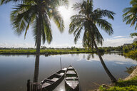 Palm trees and boats on river,  Hoi An, Quang Nam Province, Vietnam - CUF16009