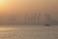 Cranes at port during sunrise - CUF16012