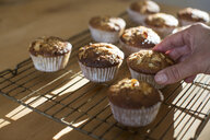 Hand picking up gluten free muffins from cooling tray - CUF16612