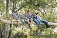 Teenage girl and young adult friends looking out from fallen tree - CUF16624