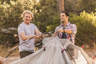 Two men putting up dome tent in forest, Deer Park, Cape Town, South Africa - CUF17041