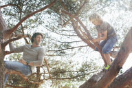 Father and son climbing tree - CUF17299