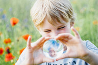 Boy holding tansparent sphere in poppy field - MJF02304