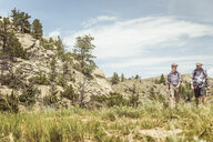 Man and teenage son hiking in landscape, Bridger, Montana, USA - CUF17434
