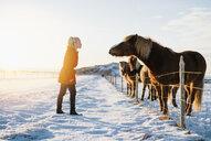 Woman talking to horses, Markarfljot, Iceland - CUF17455