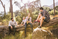 Four male campers chatting on fallen tree, Deer Park, Cape Town, South Africa - CUF18820