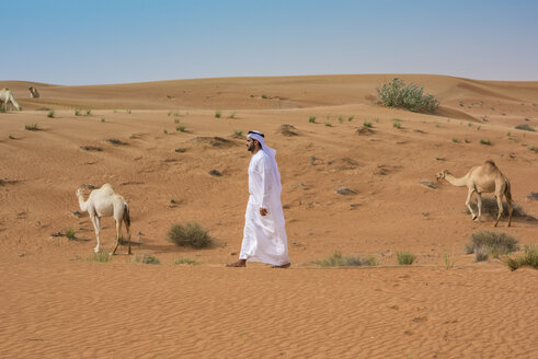 Middle eastern man wearing traditional clothes walking past camels in desert, Dubai, United Arab Emirates - CUF19134