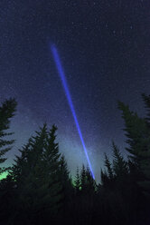 Laser beam and aurora borealis over forest, Thingvellir, Iceland - CUF19741