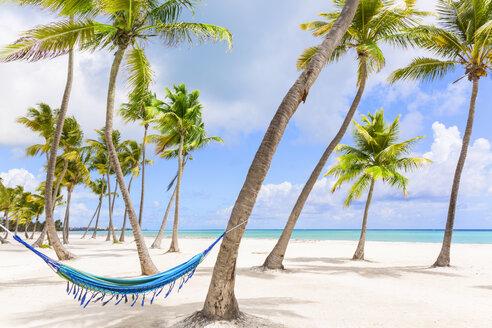 Hammock between palm trees on beach, Dominican Republic, The Caribbean - CUF19747