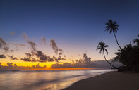 Silhouetted sunset with palm trees on beach, Dominican Republic, The Caribbean - CUF19759
