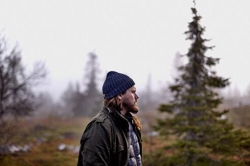 Hiker in park, Sarkitunturi, Lapland, Finland - CUF20105