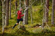 Man trail running in forest, Kesankitunturi, Lapland, Finland - CUF20129