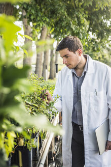Scientist examining plants at plant growth research facility - CUF20259