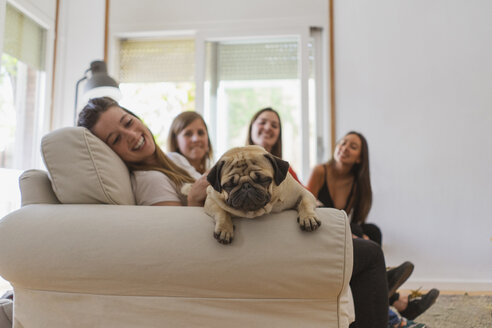 Pug relaxing on couch with four woman in the background - AFVF00611