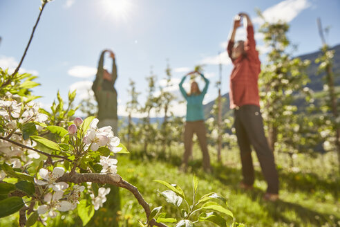 Three mature adults in field, meditating, low angle view, Meran, South Tyrol, Italy - CUF21286