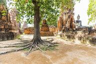 Thailand, Ayutthaya, ruins of Wat Mahathat - WPEF00394