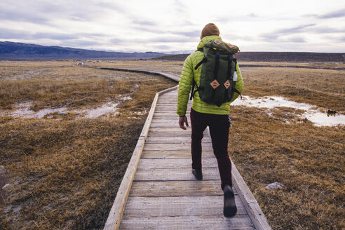 Rear view of hiker on wooden walkway over wetland, Mammoth Lakes, California, USA - ISF07607