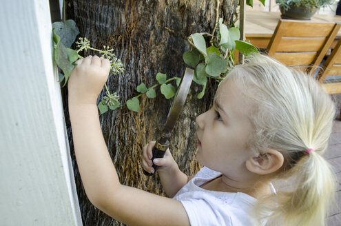 Young girl looking at plants through magnifying glass - ISF07730