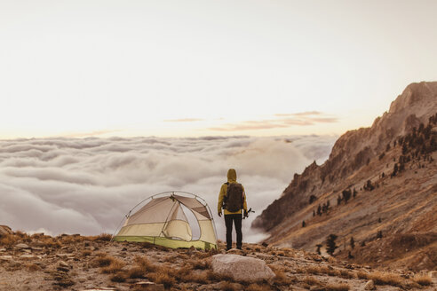 Rear view of male hiker looking out over the clouds, Mineral King, Sequoia National Park, California, USA - ISF07781