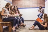 Teenage high school girls in corridor talking and reading notes - ISF07823