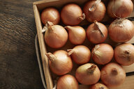 Overhead view of fresh onions in wooden crate - ISF08603