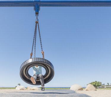 Boy on tyre swing - ISF08615