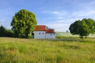 Germany, Bavaria, Chapel St. Wendelin near Schoeneberg - SIEF07794