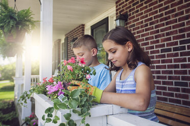 Boy and girl planting flowers in planter box - ISF09036