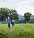 Rear view of grandmother and grandson in field, Fuessen, Bavaria, Germany - CUF23244