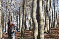 Hiker walking across woods, Montseny, Barcelona, Catalonia, Spain - CUF23331