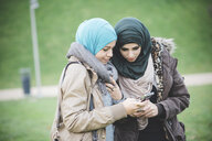 Two female friends in park reading text on smartphones - CUF23632