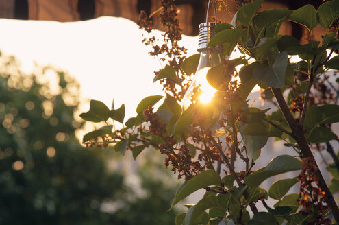 Sunshade, solar-powered lightbulb at sunset - SEEF00039