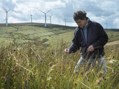 Ecologist inspecting grass on windfarm - CUF25523