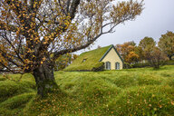 Hofskirkja Church with turf roof at Hof, Iceland - CUF28864