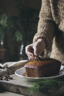 Woman's hand decorating Christmas cake - ALBF00364
