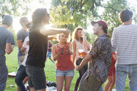 Adult friends dancing at park party at sunset - CUF30079
