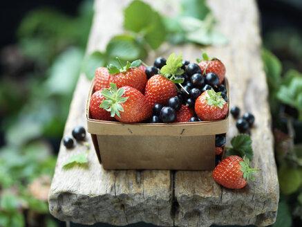Strawberries and blackcurrants in vintage wooden basket - CUF30292