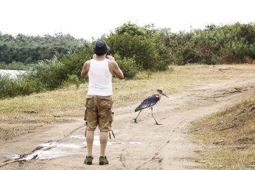 Uganda, Queen Elisabeth National Park, Touist taking pictures of a marabu - REAF00322