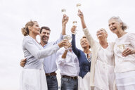 Group of friends holding wine glasses, raising glasses in toast - CUF31614